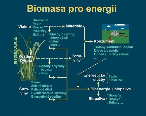 Využití biomasy. Autor: Antonín Slejška