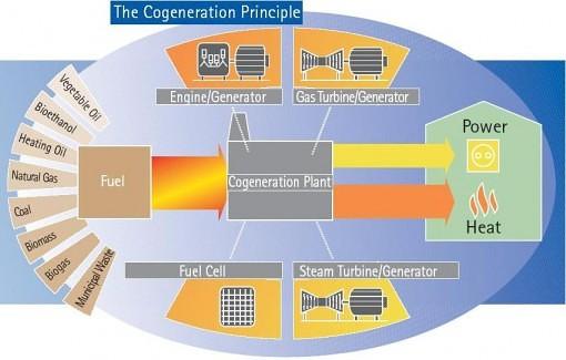 Princip kogenerace. Zdroj: www.cogen.eu