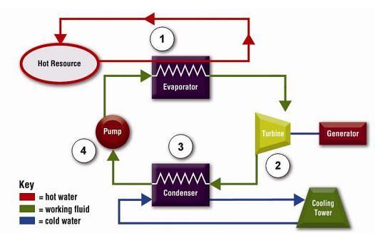 Organický Rankinův cyklus