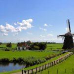 Holandská vláda čelí žalobě kvůli selhání ve snižování emisí ulíku