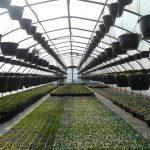 Švýcarská stanice pro zachytávání CO2 pomůže v zemědělství