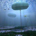 Elektřina z vln může pokrýt až třetinu australské spotřeby