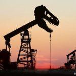 Ropa zažívá divoké časy, budoucnost je nejistá