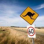 Australané v průzkumu podpořili energetiku založenou na OZE