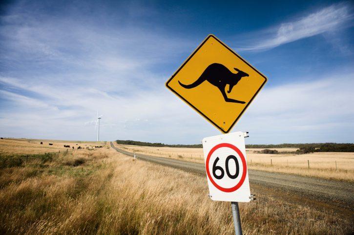 Austrálie klokan OZE Zdroj ewea.org