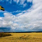 """Švédsko ročně nakoupí povolenky téměř za miliardu a """"zruší"""" je"""