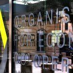 OECD: cena emisí oxidu uhičitého není dostatečná