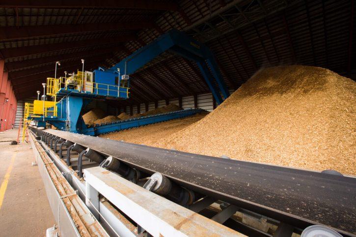 Dopravníkový pás s biomasou v elektrárně Schiller. Autor: PSNH