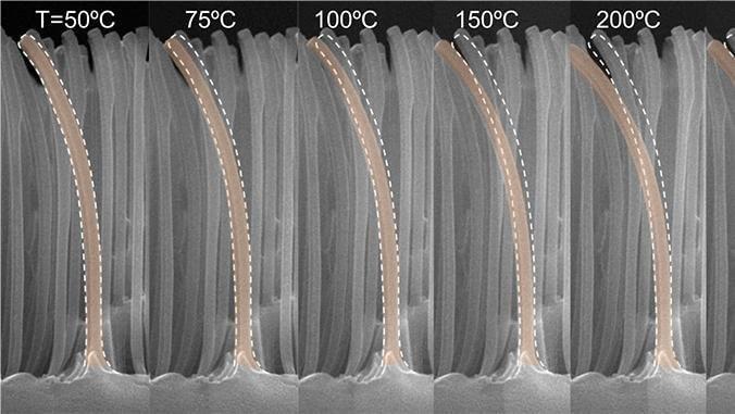 Deformace bimetalů s rostoucí teplotou povrchu, který pokrývají, umožňuje jeho účinnější chlazení. Autor: Sangwoo Shin